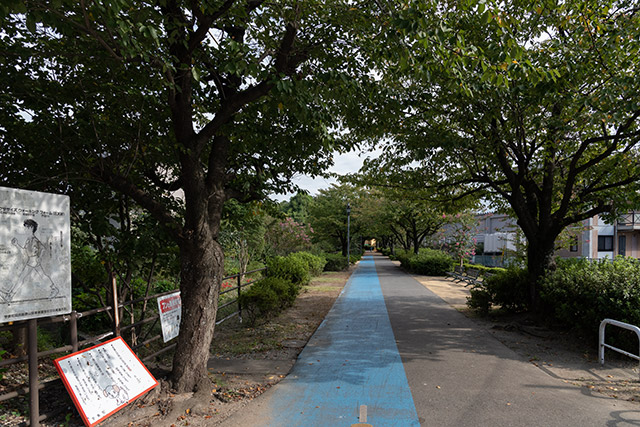 緑道(旧国鉄勝田線)